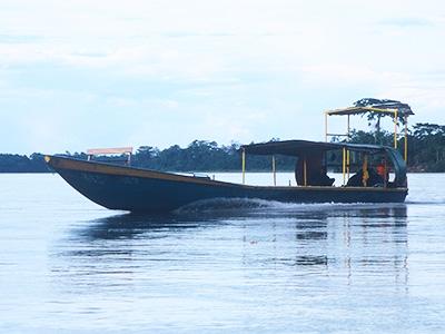 Environmental Studies - Dr Steven Andrew Martin - Rio Napo, Amazon Rainforest