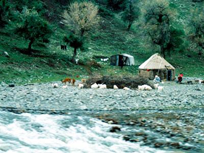 Kazakh yurts Tianshan - Heavenly Mountains - Urumqi China - Silk Road Culture