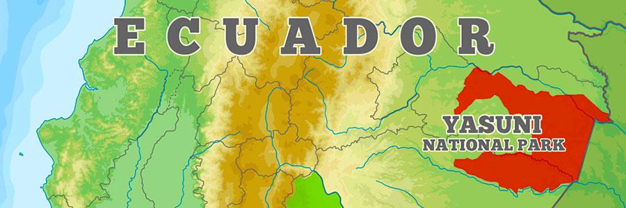 Yasuni National Park Ecuador - Dr Steven A Martin - Amazon Rainforst Photo Journal
