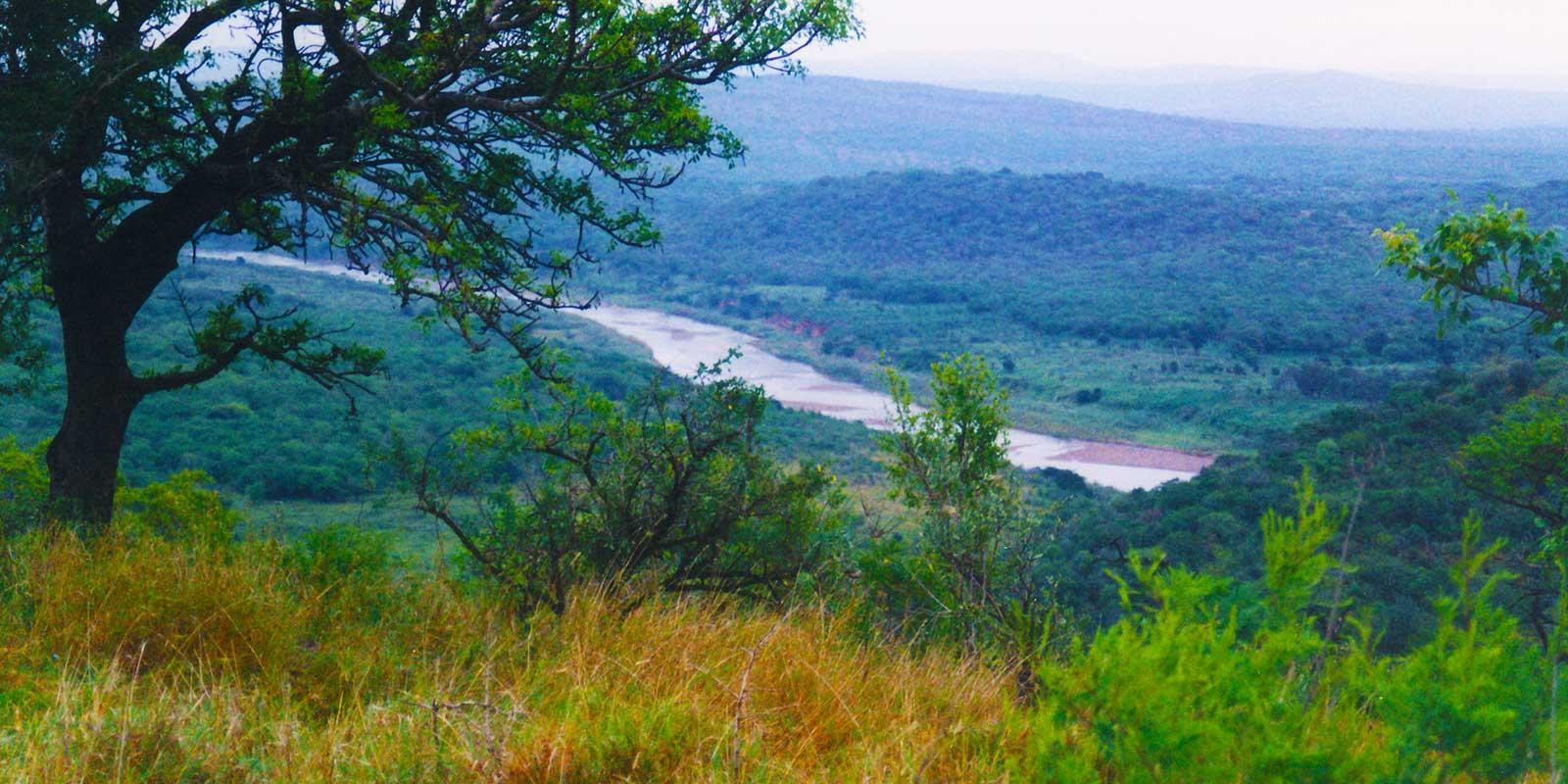 Hluhluwe-Umfolozi Game Reserve - Steven Andrew Martin - South Africa Photo Journal