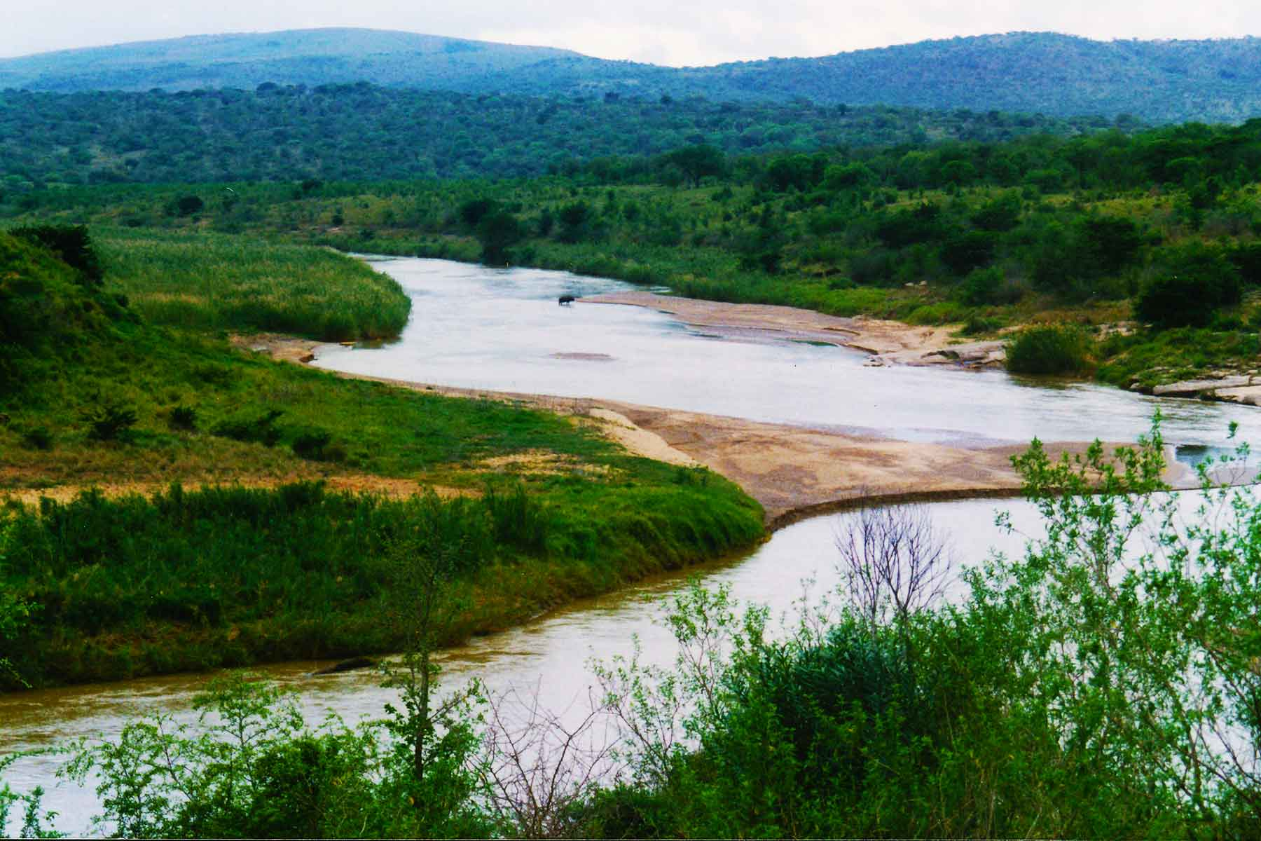 Umfolozi River - Hluhluwe-Umfolozi Game Reserve - Steven Andrew Martin - South Africa Photo Journal - international education online