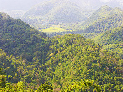 Environmental Studies - Dr Steven Andrew Martin - Landscape at Khao Yai National Park, Thailand