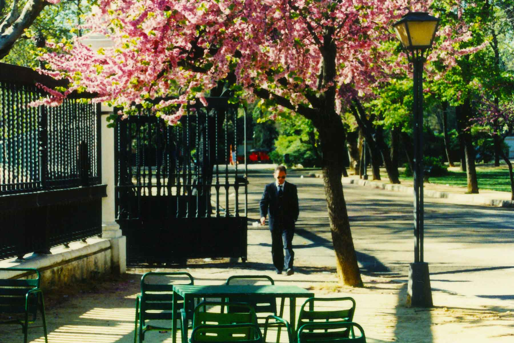 Springtime in Seville - Semester study abroad - Dr Steven Andrew Martin -  Spain Photo Journal and Research