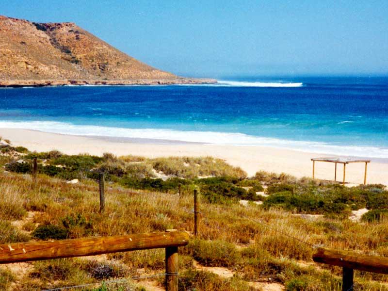 Steven Andrew Martin - Surfing Red Bluff Western Australia