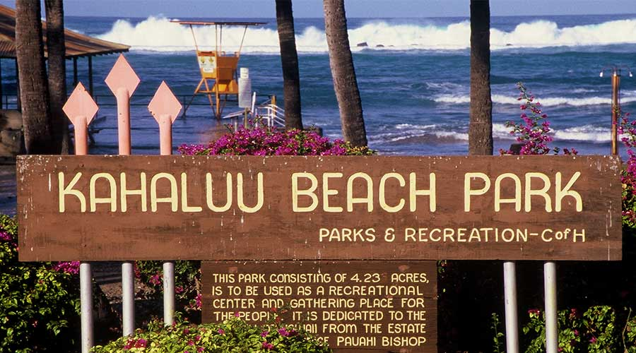 Kahaluu Beach Park Hawaii - Steven Andrew Martin - Water Safety Experience