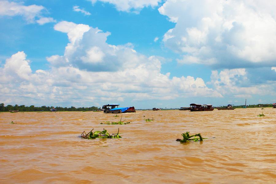 Mekong Delta Environment - Dr Steven Andrew - Martin - Vietnam Research