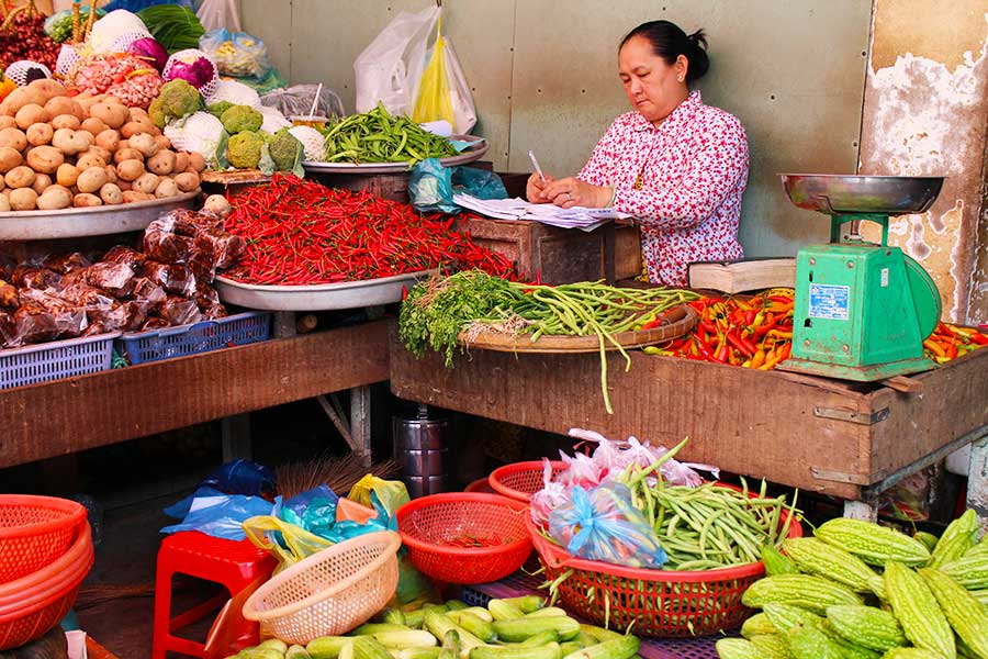 Mekong Delta Fruits and Vegetables - Food Environment - Steven Andrew Martin