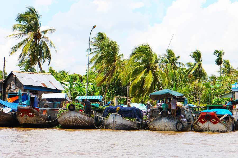 Mekong Delta Settlement - Dr Steven Andrew Martin - Research