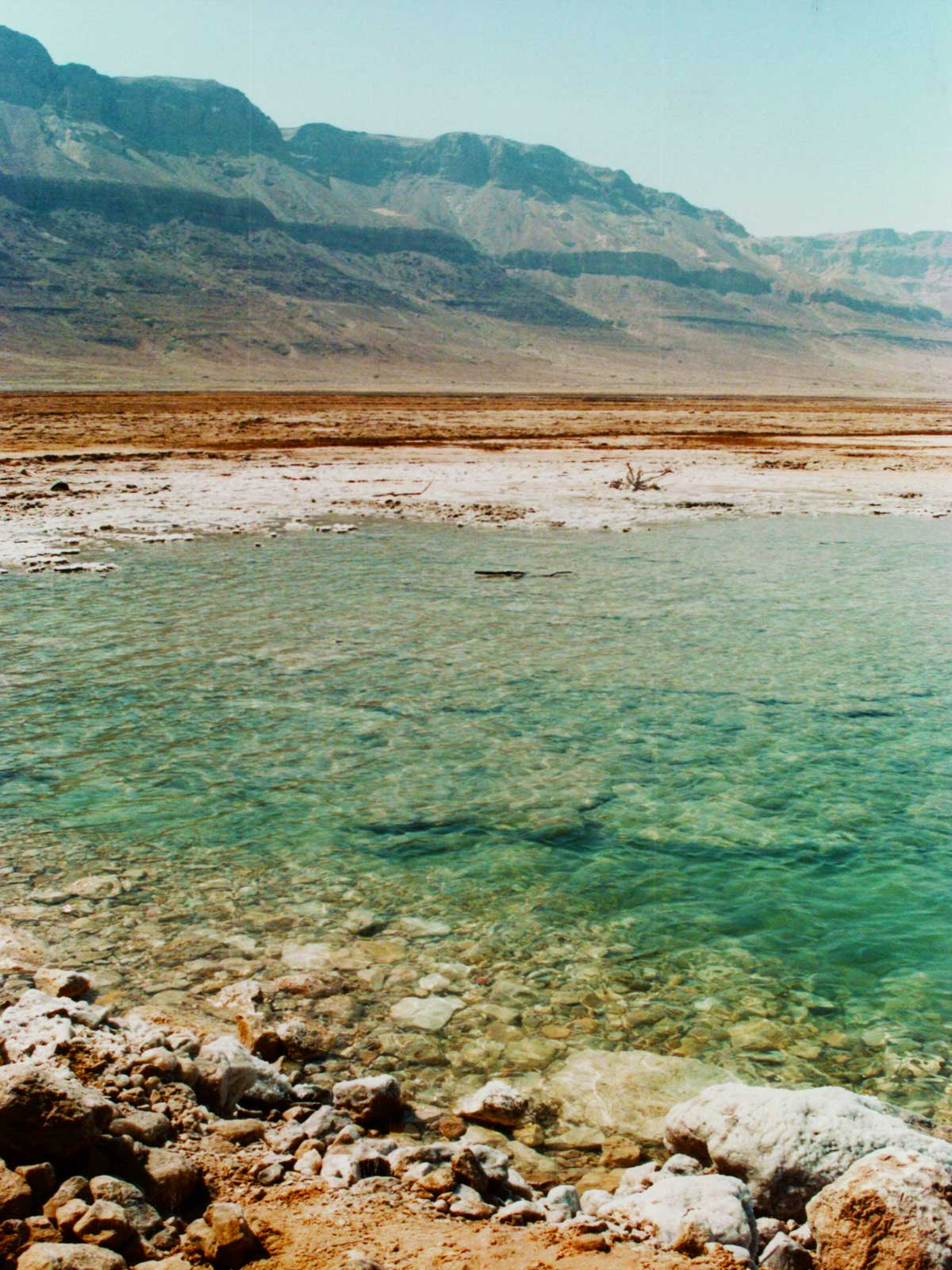 Dead Sea | Israel | Dr Steven A Martin | International Education Online | Steven Andrew Martin