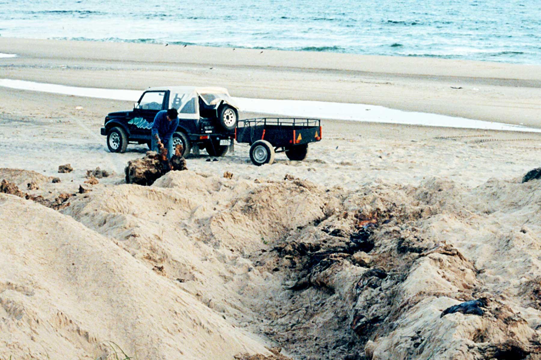 Uruguay | Whale Research | Steven Andrew Martin | South America | Travel Journal | Dr Steven Martin