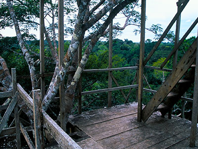 Tree-top research station at Tiputini - Dr Steven A Martin - Amazon Photo Journal