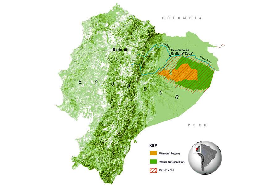 The Tiputini Biodiversity Station Ecuador - Dr Steven A Martin - Amazon Rainforst Photo Journal