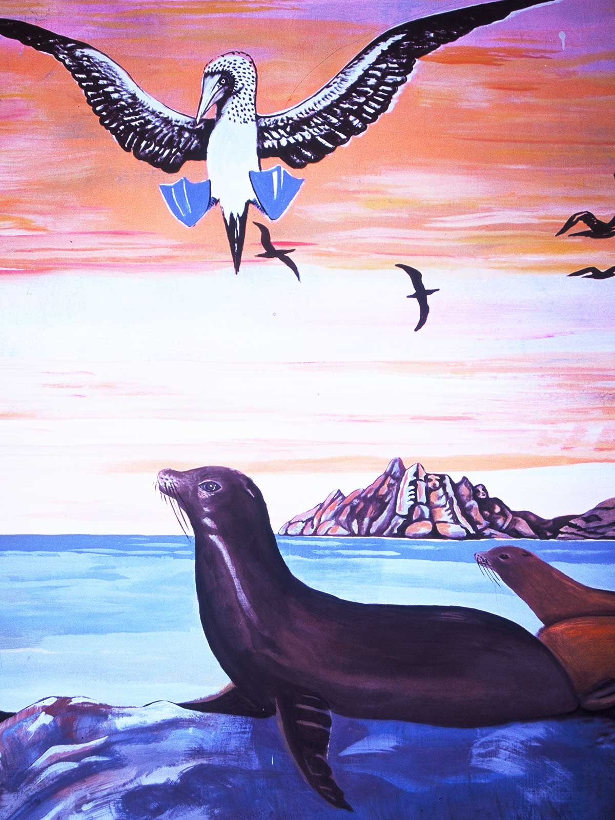 Galapagos Art | | Dr Steven Andrew Martin | Photo Journal | Education Research Ecuador