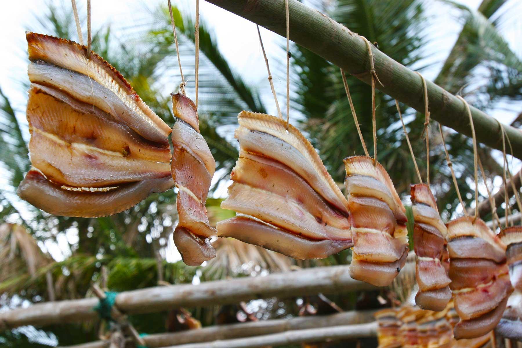 Drying fish - Batanes Islands Cultural Atlas - ECAI - Austronesian - Dr Steven Andrew Martin - Philippines research