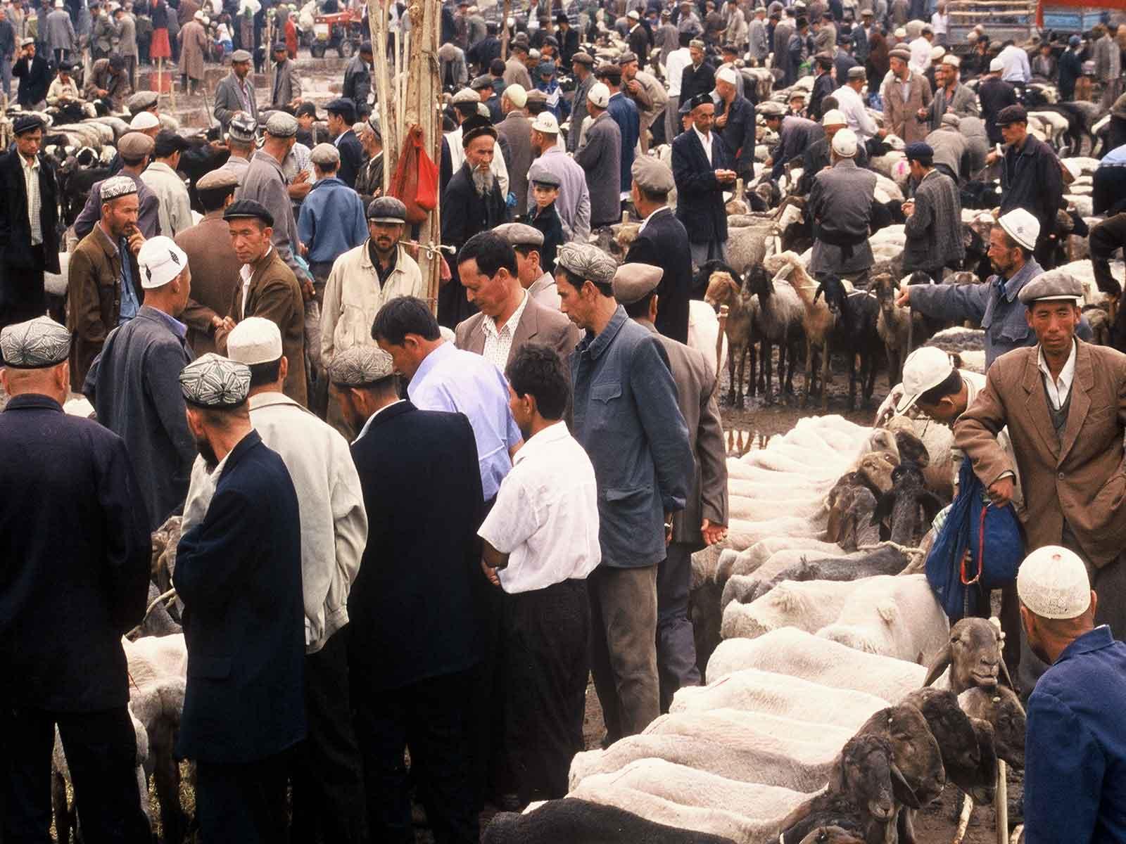 Livestock market - Kashgar Sunday Bazaar - China Silk Road Photo Journal Research - Steven Andrew Martin 2001