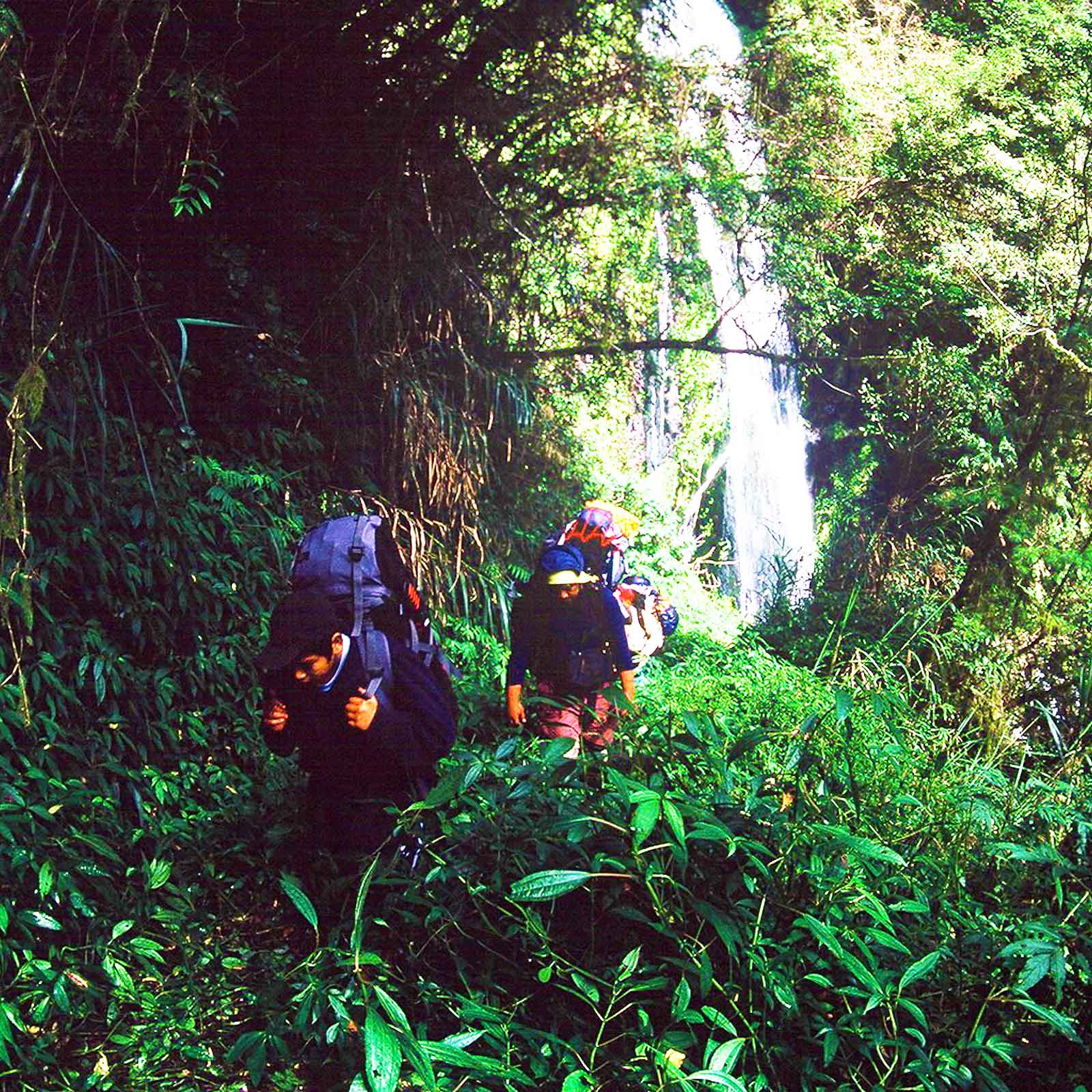 Laipunuk Research Expedition  內本鹿  Taiwan Photo Journal - Steven Andrew Martin