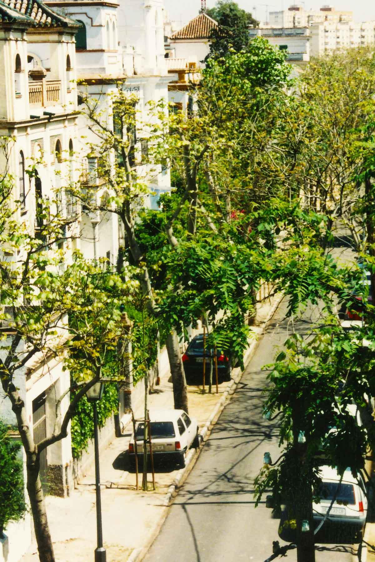 Porvenir Apartment - Spring Semester - Seville Spain - Study Abroad Journal - Steven Andrew Martin - 1998