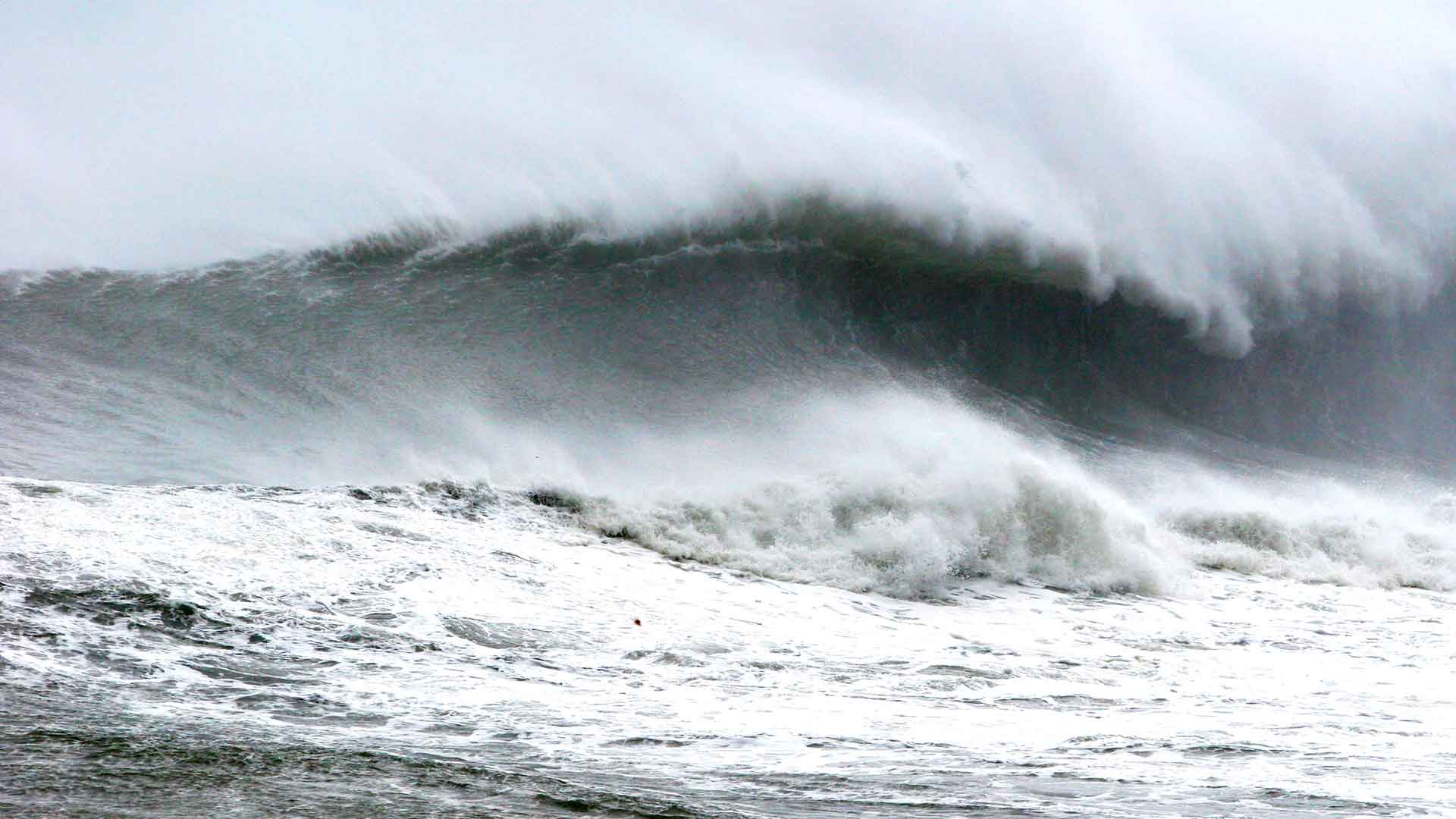 Steven Andrew Martin | Typhoon Shan Shan – Fulong Beach, Taiwan | Sureer's Journal | Learning Adventures