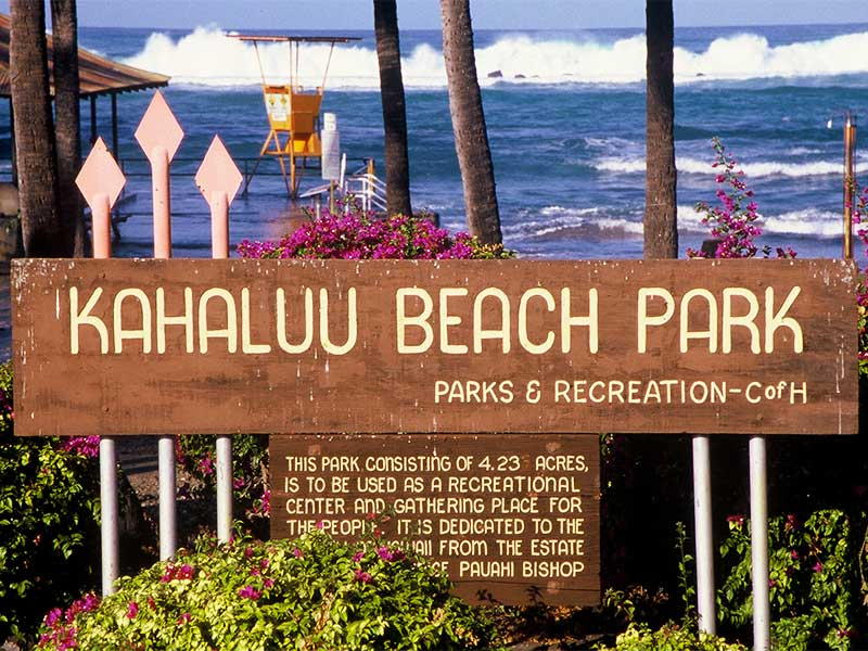 Kahaluu Beach Park Hawaii Lifeguard - Steven Andrew Martin - Water Safety and Lifeguarding