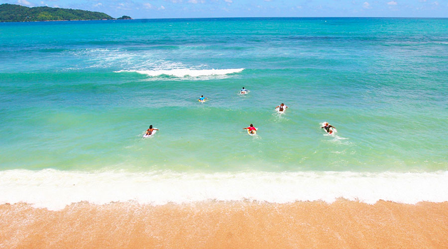 Surfing Lifestyle - Dr Steven Andrew Martin - Education and Learning