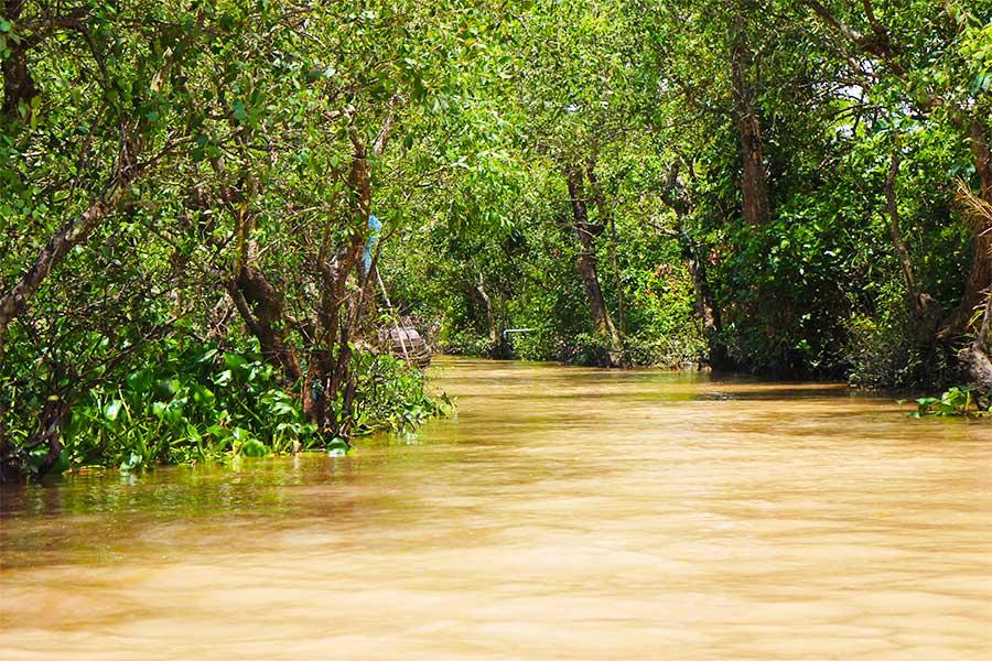 Mekong Delta Canal - Steven Andrew Martin - Environmental Studies