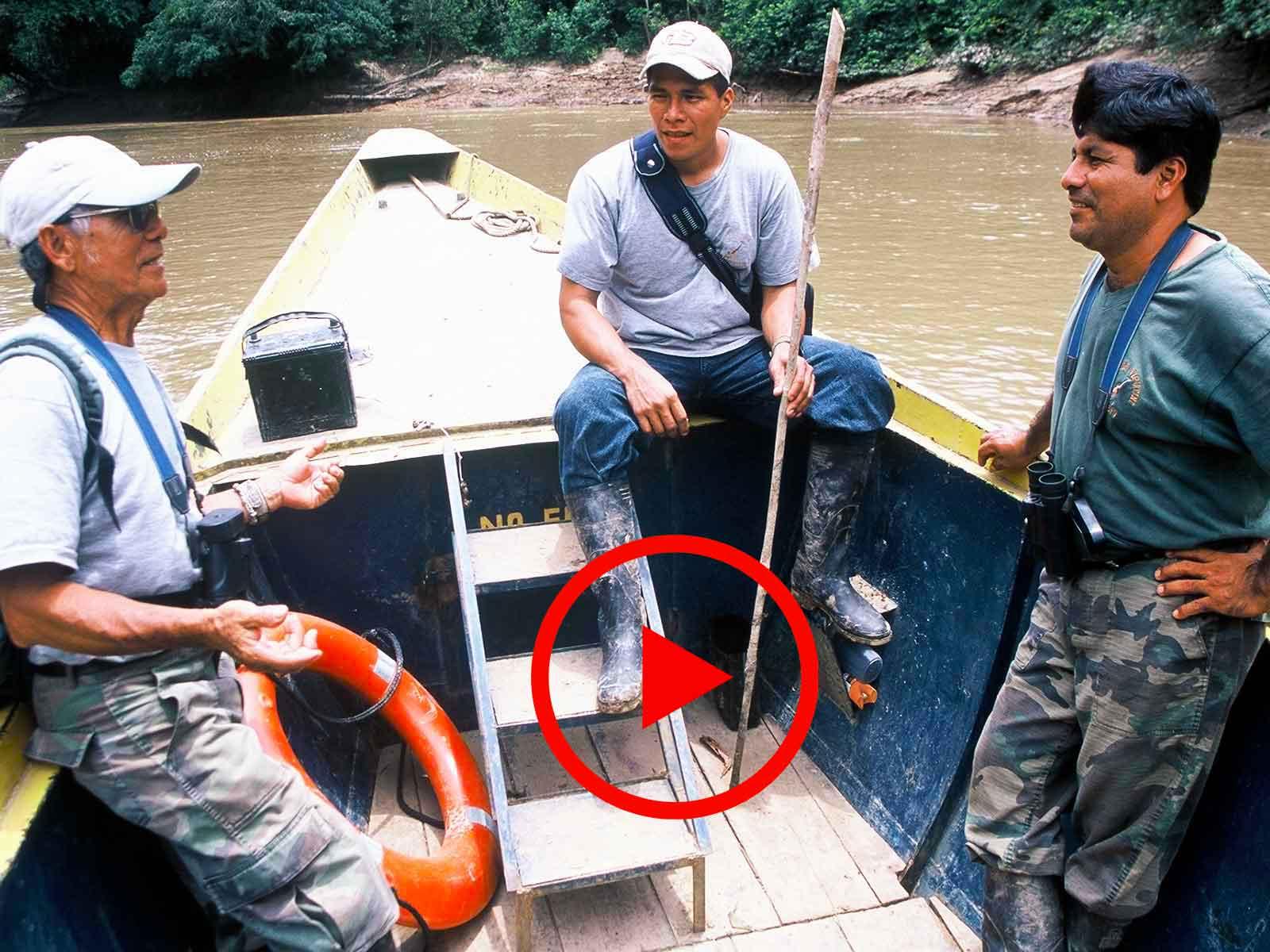 Environmental Videos - Dr Steven Andrew Martin - Amazon Research - Tiputini Biodiversity - Environmental Studies - Yasuni National Park